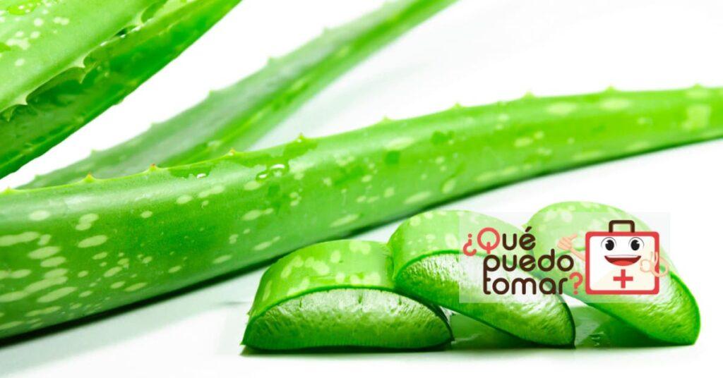 Aloe vera ayuda a disminuir los síntomas de colitis